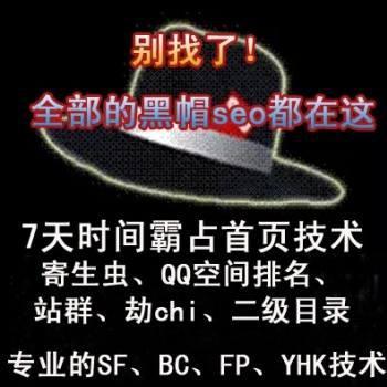 黑帽seo培训 快速排名技术培训视频教程