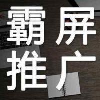 黑帽seo优化技术培训教程 百度霸屏推广实战