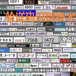 亦思验证码识别系统V3.1 易语言视频教程
