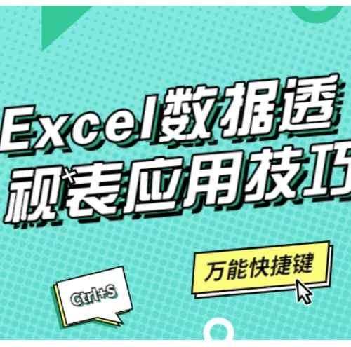 Excel数据透视表应用技巧课程