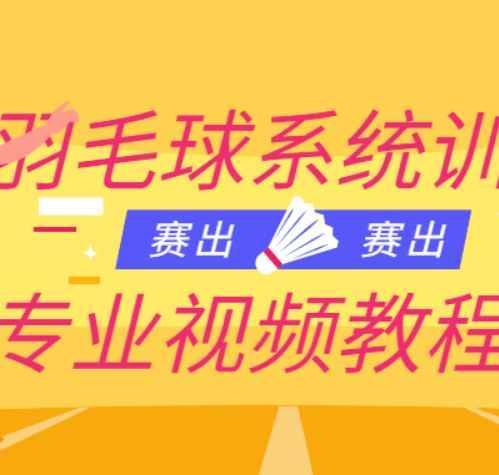羽毛球技巧教学视频 羽毛球培训教程2.6G