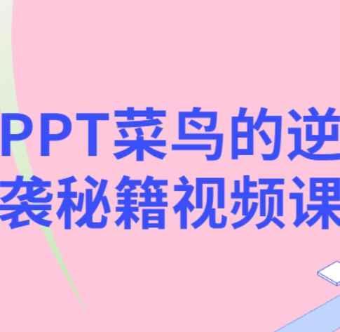 PPT制作教程步骤 菜鸟的逆袭 百度云网盘