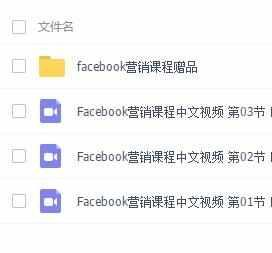 facebook脸书营销视频课程 赠单页教程
