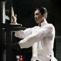 咏春拳实战教学 咏春拳培训视频教程 9G
