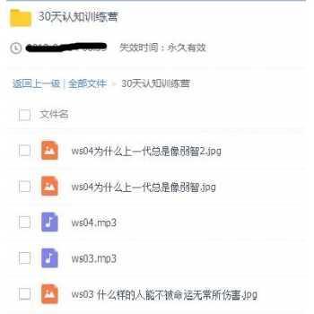 王烁30天认知训练营资源MP3百度云网盘下载